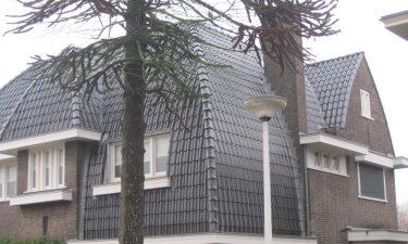 20110225 Ludwigstraat 007