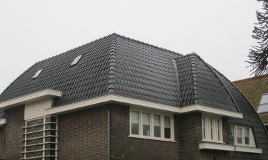 20110225 Ludwigstraat 009